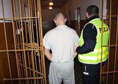 Sprawca kradzieży w areszcie
