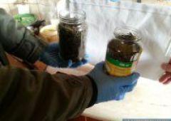 Policjanci zabezpieczyli 103 gramy narkotyków oraz dopalacze