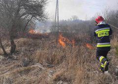Dwa pożary traw w powiecie skarżyskim w tym samym czasie